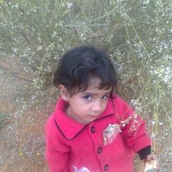 Tayeb Ouladtayeb